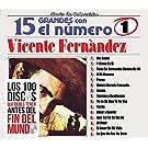 Vicente Fernandez (15 Grandes Con El Numero Uno)