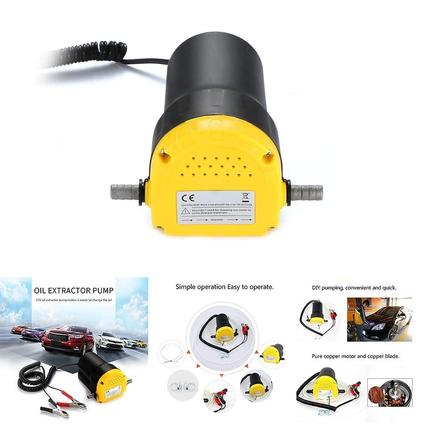 鯨サービスどれかポンプディーゼルおよびガソリンのための12V 5Aオイルトランスファーポンプディーゼル燃料エンジンオイル抽出器トランスファーポンプ