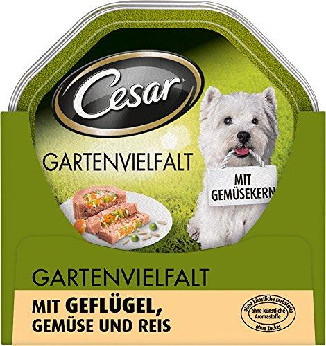 Cesar Gartenvielfalt Hundefutter Geflügel, Gemüse und Reis, 24 Schalen (24 x 150 g)