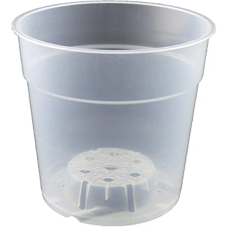 Teku plant pot container is transparent to orchids mco 12 12cm