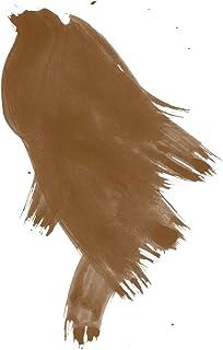 Daler-Rowney FW Acrylic Artists Ink, 1 oz, Sepia (160029251)