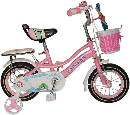 CARWORD Kinder 12 Zoll Baby fürrad Rosa M er Und Frauen Kinder fürrad Mit Trainingsrad Mit Stabilisatoren Geschenke