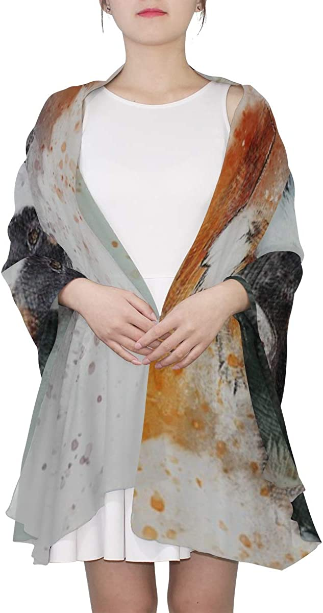 Gifts For Women Scarf Dog Animal Art Abstract Watercolor Vintage Puppy Wrist Scarfs For Women Fashion Designer Head Scarf Lightweight Print Scarves Scarf Women Spring Wrap Or Shawl