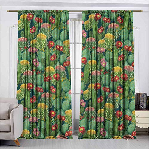 Nature Shadow Filter adds Privacy to Stylish 2 Panel Curtains Garden Flowers Cactus Texas Desert Botanical Various Plants with Spikes Pattern Anti-Wrinkle no Fading Noise Reduction UV Protection W72