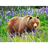 草の中のジグソーパズルグリズリー大人と子供のための6000ピースパズル