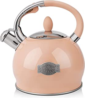RETTBERG Tea Kettle for Stovetop Whistling Tea Kettles Modern Orange Stainless Steel Teapots, 2.64 Quart (Orange)