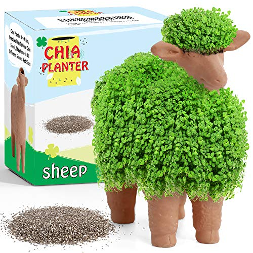 Sheep Chia Decorative Pottery Planter (4.5' x 4.5' x 3.5') - Chia Seeds Included - Plant and Grow Sheep Fur - Funny Novelty Gift