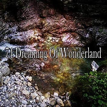 74 Dreaming of Wonderland