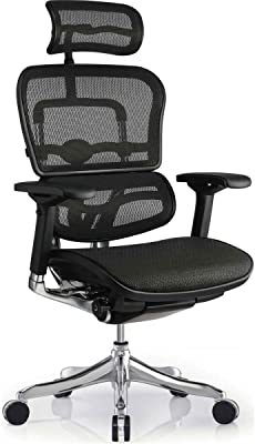 Finch Fox Ergo Human Elite Chair with Headrest (Black)