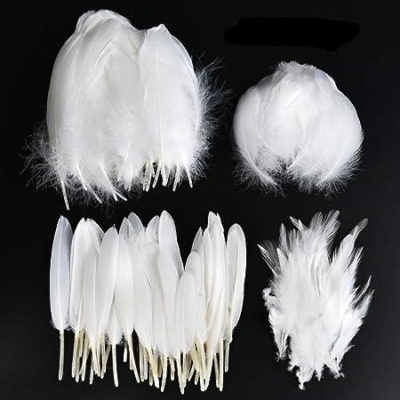 Plume Blanche 300pcs YANSHON Plumes Blanc Plume Décoration, Idéal Pour Costumes, Chapeaux, Décoration d'intérieur Fete Mariage Anniversaire, Multicolore