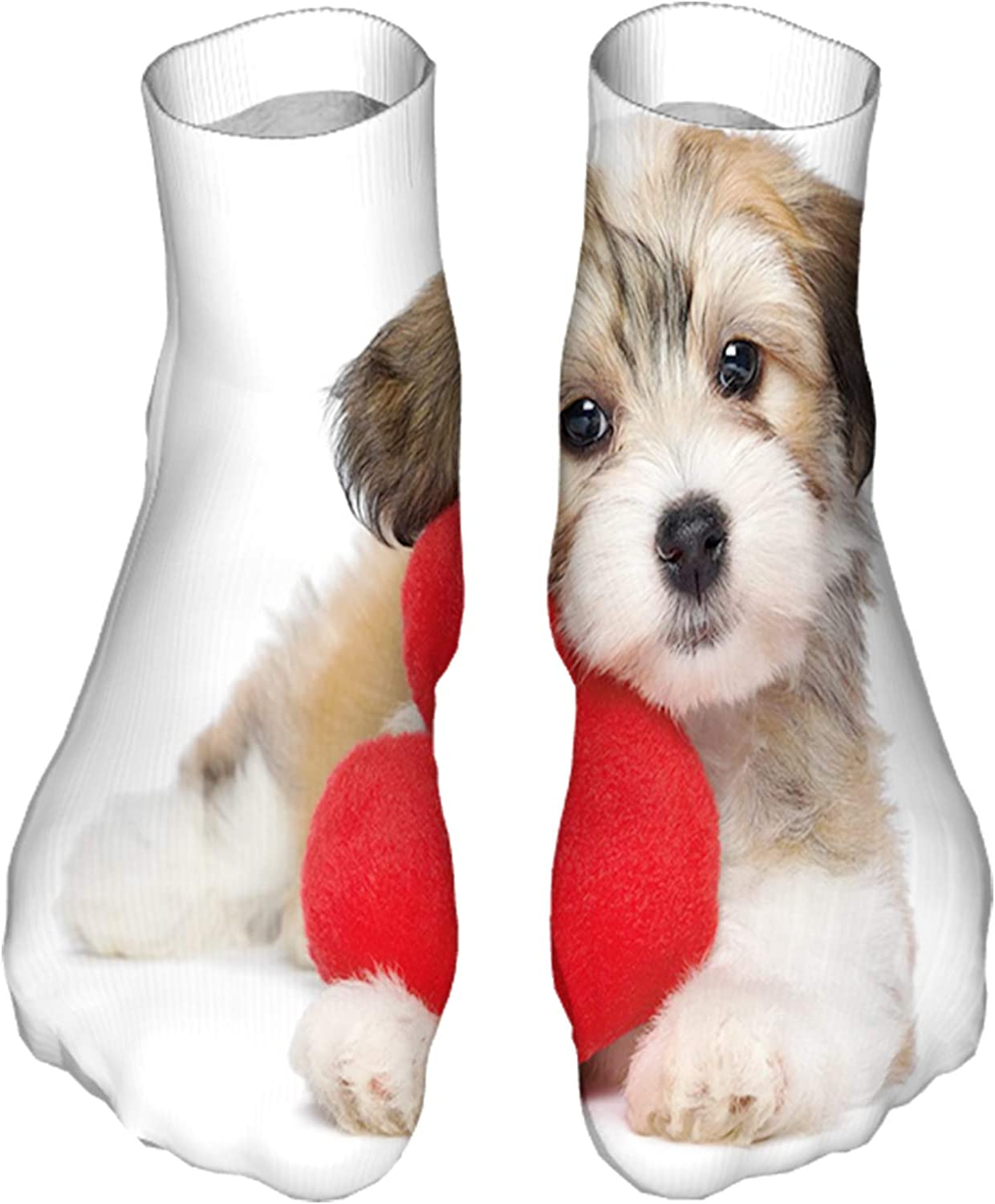 Men's and Women's Fun Socks Printed Cool Novelty Funny Socks,Lover Valentine Havanese Puppy Dog with a Red Heart