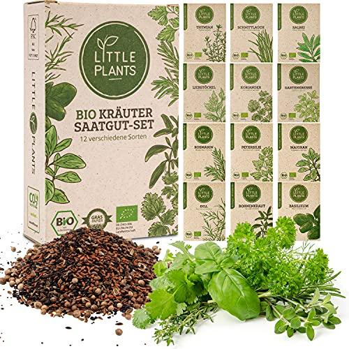 Little Plants BIO Kräuter Samen Set - 12 Sorten Küchenkräuter, 100{5fedfbf15559dff4c27b63d7b7a339df67f5af2f29857c0e4fb1dbe108a981dc} Natürlich - BIO Saatgut Kräutersamen für Kräutergarten - Pflanzen Samen - Rosmarin - Salbei - Basilikum und mehr