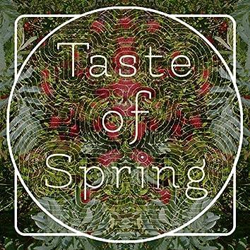 Taste of Spring (Edit)