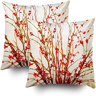 Musesh Christmas Pack of 2 Flowers Light tan Cushions Case Throw Pillow Cover for Sofa Home Decorative Pillowslip Gift Ideas Household Pillowcase Zippered Pillow Covers 16x16Inch