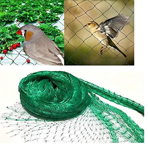 Ram 4m x 10m Vert Jardin Anti Oiseaux pour Protection des Plantes Maille pour Lutter Contre Les parasites, Fruits Pois Filet de Repousse-pesticides, Green