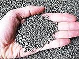 Prodigy Plus 1/3 mm (5 kg), concime granulare per bonsai, piante e fiori...