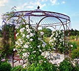 ELEO Florenz runder Rosenpavillon mit Messingkugel, Ø 3,7 m (Oberfläche: roh / Edelrost)