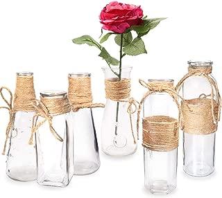 Habbi Glass Vases Set of 6, Clear Glass Flower Vase with Rope Design for Home Decration