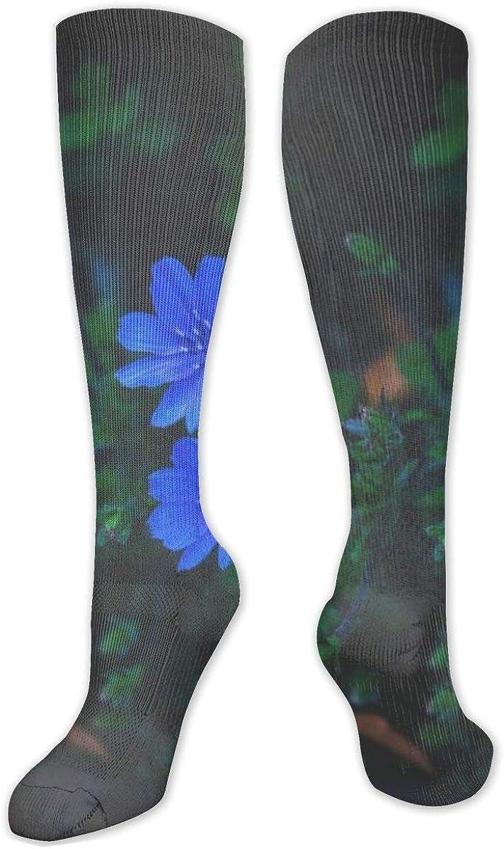 Blue Petaled Flowers Grass Knee High Socks Leg Warmer Dresses Long Boot Stockings For Womens Cosplay Daily Wear
