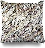 Throw Pillow Cover Granito Envejecido Marrón Moderno Pared de ladrillo Gris Abstracto Edificio de bloques de arquitecto Diseño de hormigón Funda de cojín para el hogar Pollos cuadrados 16×16pulgada