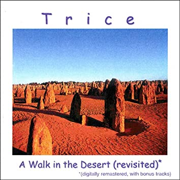 A Walk in the Desert (Revisited)
