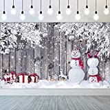 Christmas Backdrop for Photography, Fabric Wood Background Winter Snowman Photography Backdrop Merry Christmas Photography Background New Year Party Christmas Photography Props, 72.8 x 43.3 Inch