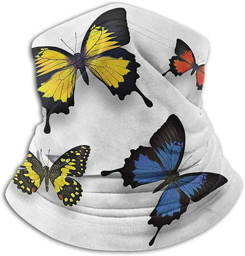 Bandanas For Men Butterfly Cold Weather Face Cover Various Colorful Butterflies Pattern and Moths Grace of Nature Wings Home Decor Multicolor