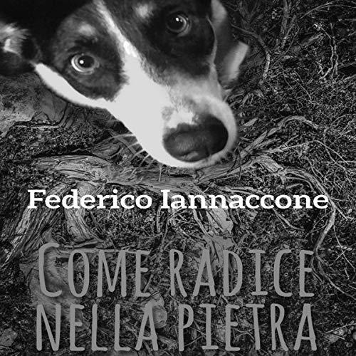 Come radice nella pietra                   Di:                                                                                                                                 Federico Iannaccone                               Letto da:                                                                                                                                 Stefano Trillini                      Durata:  2 ore e 1 min     5 recensioni     Totali 4,6
