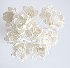 Exotic Plawanature Set of 10 White Lotus Sola Wood Flower