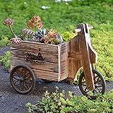2PCS Retro Holz Fahrrad Blumentopf, FüR KräUter Und Sukkulenten Balkon PflanzgefäßE, BestäNdig Gegen Sonnenlicht Und Korrosion,FüR Ornament Heimgarten,C
