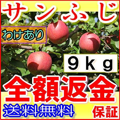 訳あり 産地直送 長野産 サンふじ りんご 約9kg 24~50個入