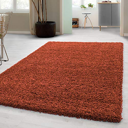 Hochflor Shaggy Teppich für Wohnzimmer Langflor Pflegeleicht Schadsstof geprüft 3 cm Florhöhe Oeko Tex Standarts Teppich, Maße:80 cm Rund, Farbe:Terra