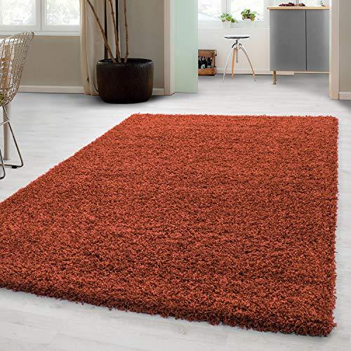 Hochflor Shaggy Teppich für Wohnzimmer Langflor Pflegeleicht Schadsstof geprüft 3 cm Florhöhe Oeko Tex Standarts Teppich, Maße:120x170 cm, Farbe:Terra