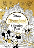 Disneyland Parks Colouring Book