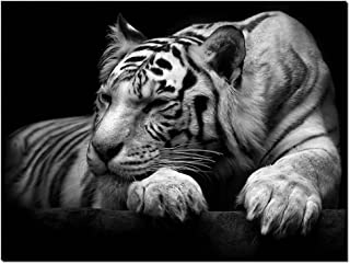 GOUPSKY New Modern Wildlife Wall Painting Animal Black and White Tiger Poster Paint on Canvas Prints Home Decorative Art Picture (16x20inchx1pcs(40x50cmx1pcs))