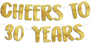 Cheers to 30 Years Gold Glitter Banner - 30th Anniversary...