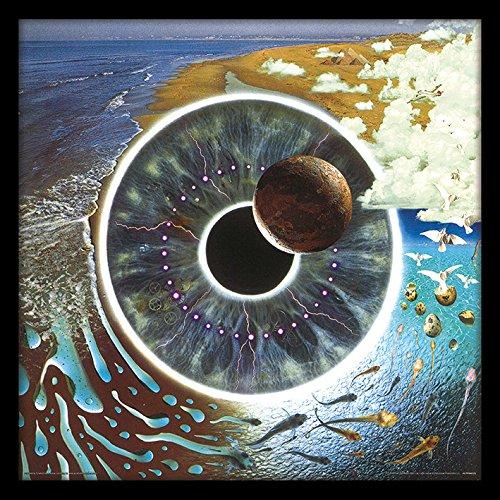 Pink Floyd (Pulse) 31.5 x 31.5 cm objet Souvenir
