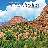 New Mexico Wild & Scenic 2021 12 x 12 Inch Monthly Square Wall Calendar, USA United States of America Southwest State Nature