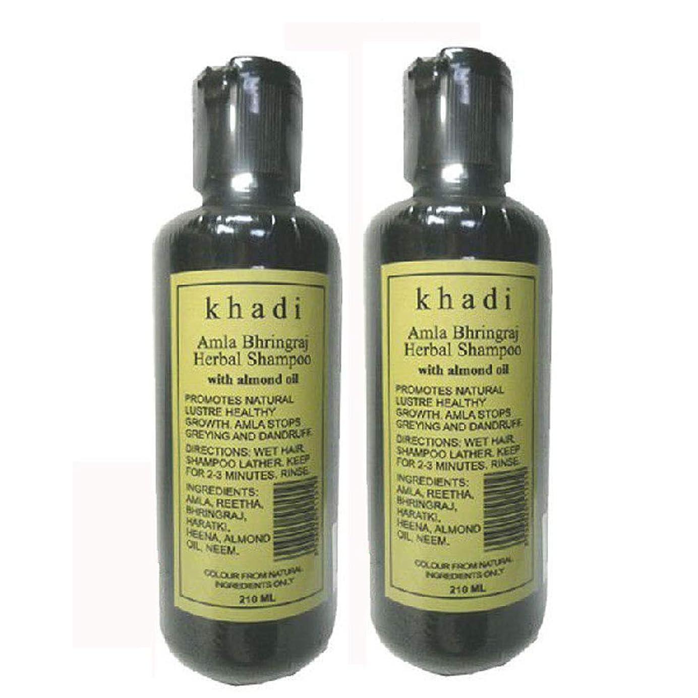 ドラゴン弁護痛い手作り カーディ アムラ リーサ ハーバルシャンプー 2本セット KHADI Amla Rertha Herbal Shampoo(Amla Bhringraj Herbal Shampoo)2set
