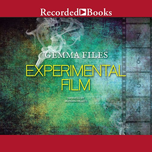 Experimental Film audiobook cover art