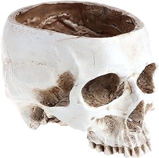 وعاء زهور بتصميم رأس جمجمة بشري من FAIRY RABBIT ، وعاء زهور ، زينة منزلية ، أصيص زهور على شكل جمجمة في مهرجان الأشباح ، أبيض