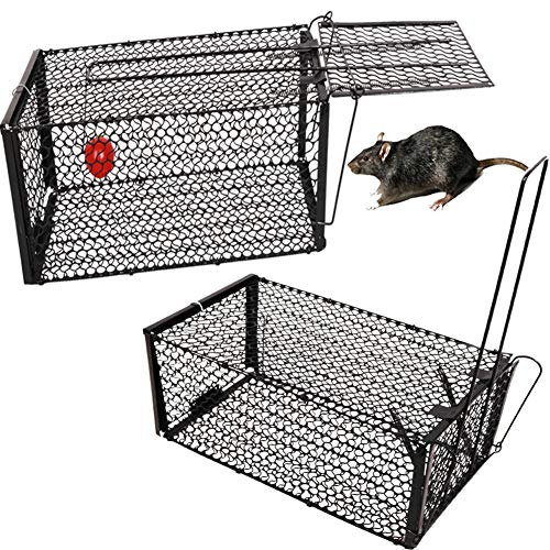 YOMERA Jaula de Trampa para AnimalesPlegable 28 * 14 * 14Cm Trampas de Jaula para Ratones de Animales Vivos Humanos con Acero Pintado Antióxido Reacciona Más Rápido Trampas de Jaula para Ratones