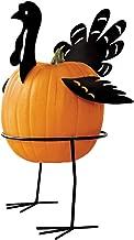 Collections Etc. Metal Turkey Pumpkin Holder, Pumpkin Stand with Base Decor 5 Pcs