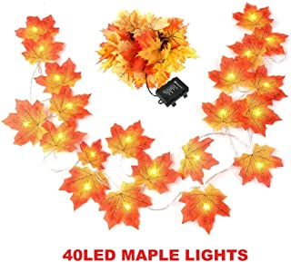 Thanksgiving Decorations Lighted Fall Garland 14.7 Feet 40 LED Autumn Garland, Battery Powered, Perfect Decoration for Autumn (Warm White)