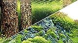 Hobby 31030 Fotorückwand-Zuschnitt Scaper's Hill