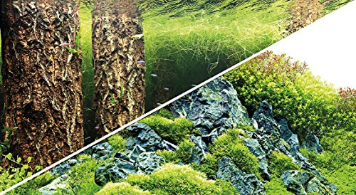Hobby 31030 Fotorückwand-Zuschnitt Scaper\'s Hill / Scaper\'s Forest