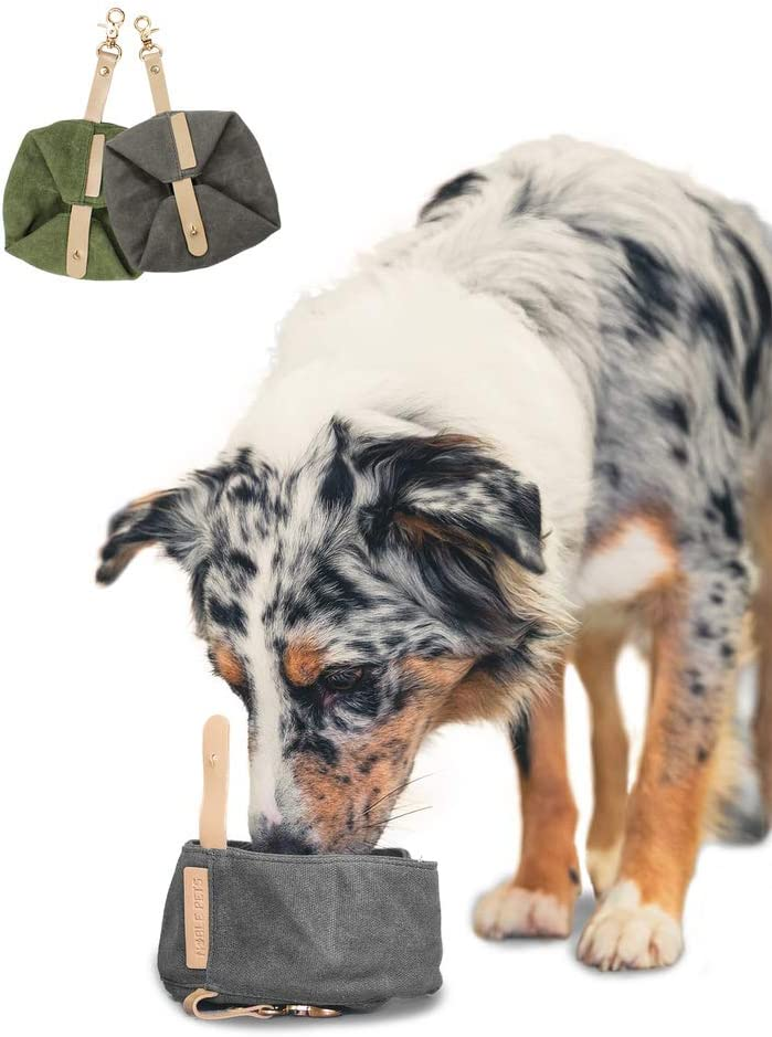 accesorio bebedero plegable camping perros