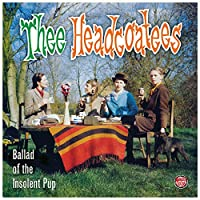 Ballad of the Insolent Pup [12 inch Analog]