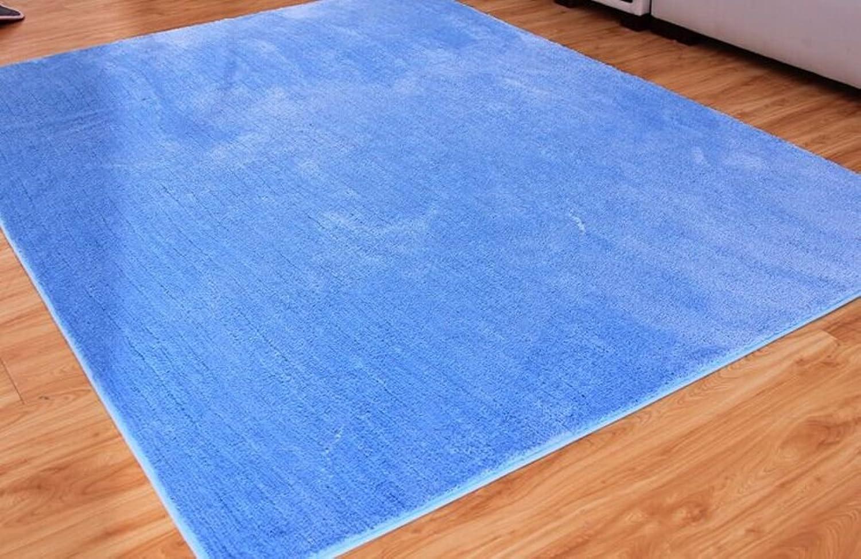 Doormats Water-Absorption Door mat Bathroom Kitchen Anti-Slip Door mats Bedroom Blanket for Bedroom -G 80x140cm(31x55inch)
