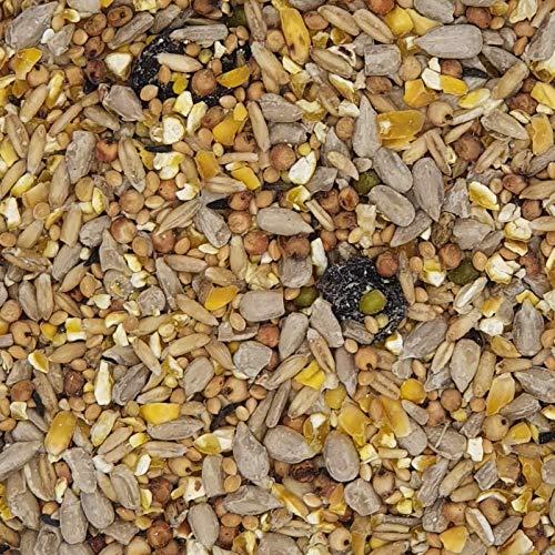 Clean Garden schalenlos – Versele Nature 10 kg